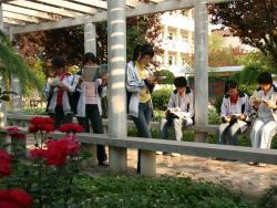 我们在和谐的校园环境中享受着学习的快乐